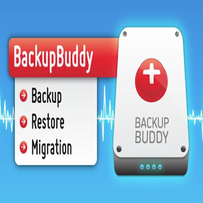 How BackupBuddy saved my bacon